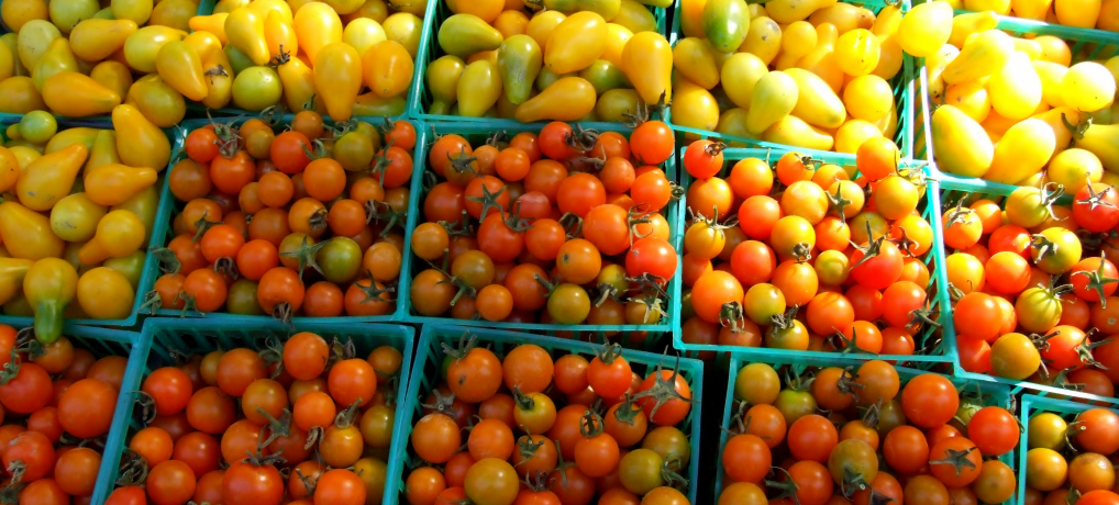 Project Voedselpakketten