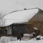 Gezinsadoptie 2009 (3)